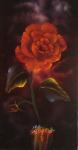 Rose de Mystique Red